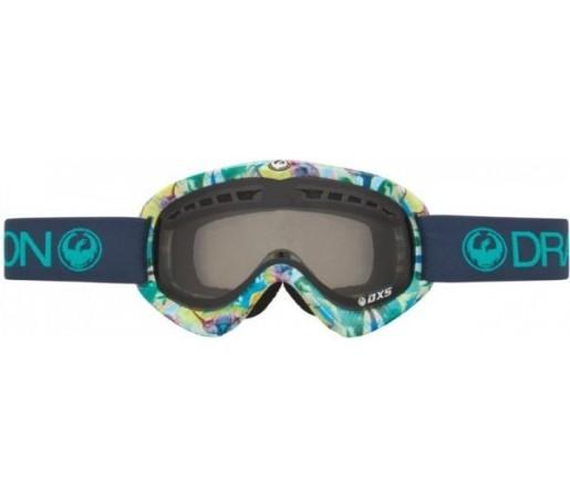Ochelari Schi si Snowboard Dragon DXs Multicolor / Smoke