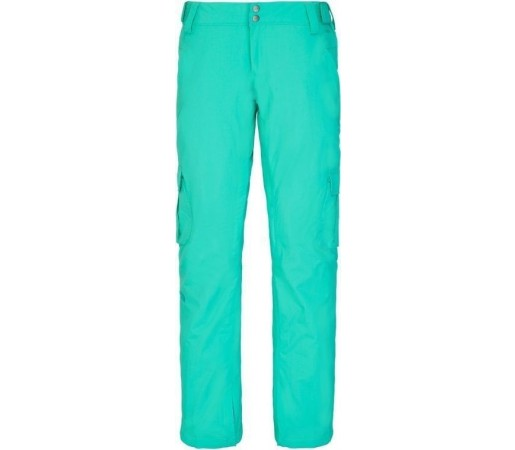 Pantaloni de Ski si Snowboard The North Face W Go Go Cargo Retro Green