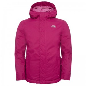 Geaca Schi si Snowboard The North Face Y Snowquest Roz