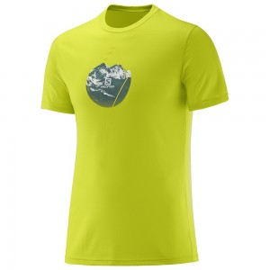 Tricou Salomon X Alp Graphic SS M Lime