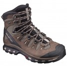 Incaltaminte hiking Salomon Quest 4D 2 GTX M Maro