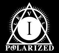 lentile polarizate nivelul I