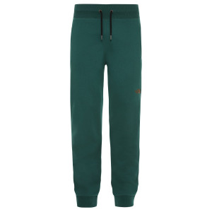 Pantaloni Drumetie Barbati The North Face NSE Night Green Regular (Verde)