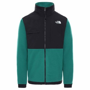 Polar Drumetie Barbati The North Face Denali 2 Jkt Ever Green (Verde)