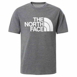 Tricou Casual Copii The North Face Boy'S S/S On Mountain Tee Gri