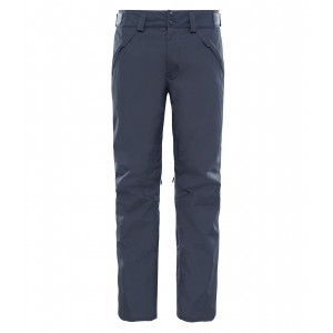 Pantaloni Schi The North Face Presena M Gri