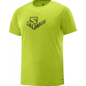 Tricou Salomon Stroll Graphic SS M Lime