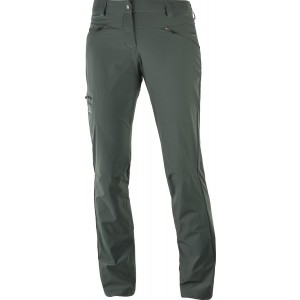 Pantaloni Hiking Salomon Wayfarer W Gri