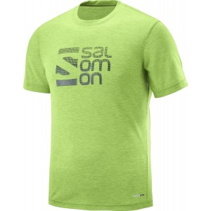 Tricou Hiking Salomon Explore Graphic SS M Lime