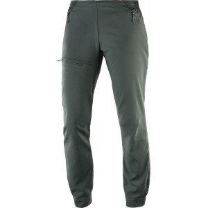 Pantaloni Hiking Salomon Outspeed W Gri