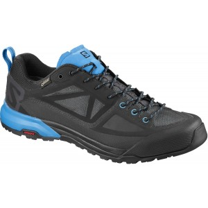 Incaltaminte Hiking Salomon X Alp Spry GTX M Indigo