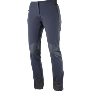 Pantaloni Hiking Salomon Wayfarer Mountain W Gri Inchis