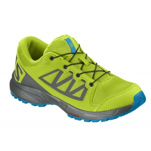 Incaltaminte Juniori Hiking Salomon XA Elevate Lime / Gri