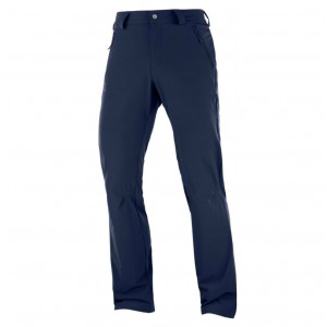 Pantaloni Barbati Hiking Salomon Wayfarer Straight LT Bleumarin