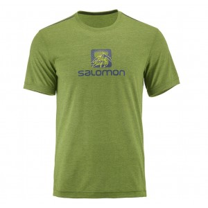 Tricou Barbati Salomon Explore Graphic Verde