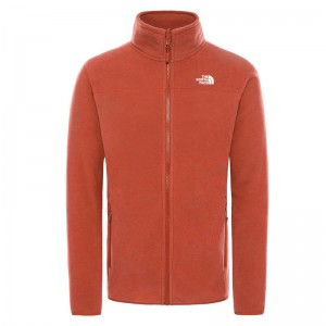 Polar Drumetie Barbati The North Face M 100 Glacier Full Zip Brandy Brown (Maro)