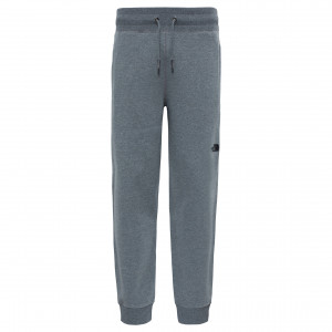 Pantaloni Barbati The North Face NSE Gri