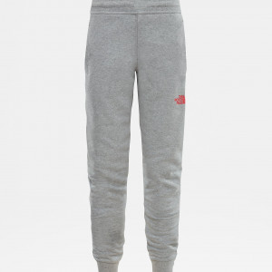 Pantaloni Juniori The North Face Fleece Gri