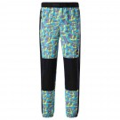 Pantaloni Casual Barbati The North Face Black Box Track Pant Multicolor